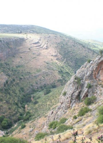 Tours in the Golan Heights and Galilee