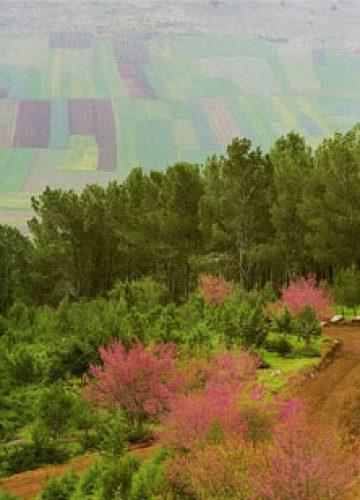 טיולי טבע ומורשת בגליל ובגולן