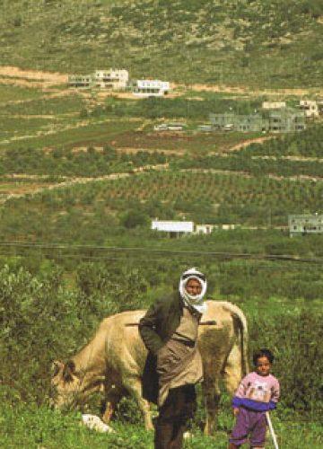 טיולים מודרכים בגליל ובגולן